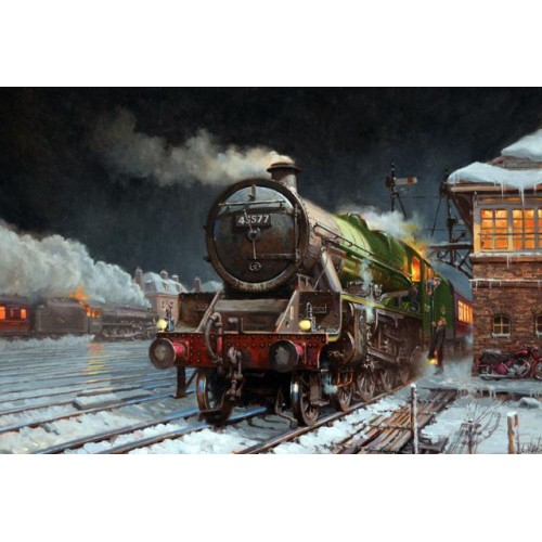 Bengal waits at Hereford by David Noble