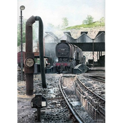 Q1 Class on Guildford Shed by Nick Hardcastle