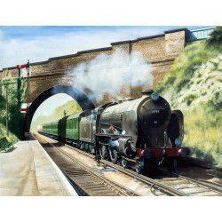 Hastings Express at Chelsfield by Steve Wyse
