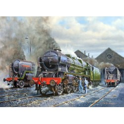 Royal Scot - Ready For Duty by Wynne B Jones